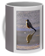 Robin Reflection Coffee Mug