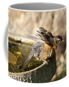 Robin Shaking Water Off Coffee Mug