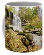 Rock Glen Falls Coffee Mug by Cale Best
