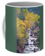 Rocky Mountain Golden Canyon Scenic View Coffee Mug