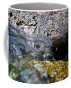 Rolling River Coffee Mug