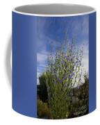 Romaine Lettuce Flowers Coffee Mug by Donna Munro