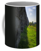 Roman Aqueducts Coffee Mug
