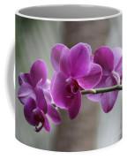 Romantic Purple Orchids Coffee Mug