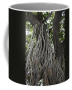 Roots From A Large Tree Inside Jallianwala Bagh Coffee Mug