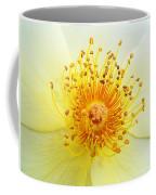 Rosa Golden Wings Coffee Mug