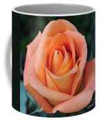 Rose 33 Coffee Mug