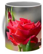 Rose And Her Buds Coffee Mug