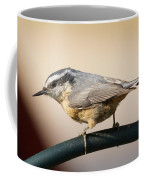 Rose Breasted Nuthatch Coffee Mug