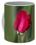 Rose Flower Series 1 Coffee Mug