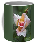 Rose Flower Series 11 Coffee Mug