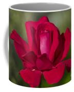 Rose Flower Series 2 Coffee Mug