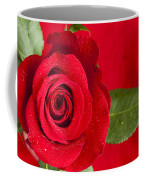 Rose Flower Wet 1 B Coffee Mug