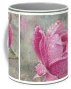 Rose Triptych 11 Coffee Mug