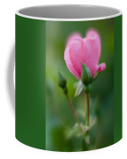 Rose With Pink Glow Coffee Mug