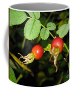 Rosehips Coffee Mug