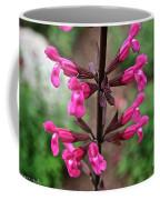 Rosey Leaf Sage Coffee Mug