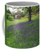 Rowallane Garden, Co Down, Ireland Wild Coffee Mug