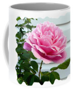 Royal Kate Rose Coffee Mug by Will Borden