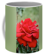 Royal Red Rose Coffee Mug