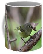 Ruby-crowned Kinglet Nabs A Moth Coffee Mug