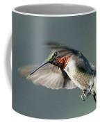 Ruby-throated Hummingbird - Hover Coffee Mug