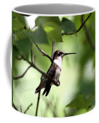 Ruby-throated Hummingbird - Shade Coffee Mug