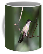 Ruby-throated Hummingbird - Hanging Low Coffee Mug
