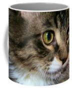 Rufus 4 Months Coffee Mug