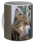Runcius- My King Kitty Enjoying The Sunshine Coffee Mug