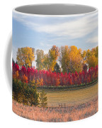 Rural Country Autumn Scenic View Coffee Mug