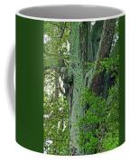 Rural Trees Close Up Coffee Mug
