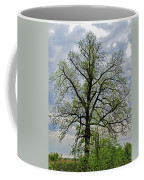 Rural Trees I Coffee Mug