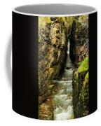 Rushing Through The Chasm Coffee Mug