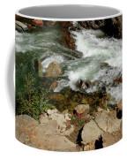 Rushing Water Glen Alpine Creek  Coffee Mug