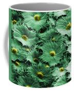 Russian Silverberry Leaf  Coffee Mug