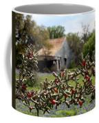 Rustic Cactus Abandoned Barn Coffee Mug