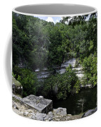 Sacred Well Coffee Mug