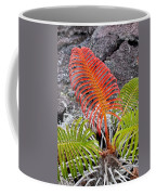 Sadleria Fern Hawaii Coffee Mug