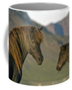 Safe Heaven Coffee Mug