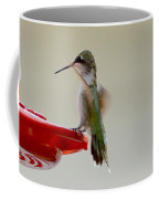 Safe Landing Coffee Mug