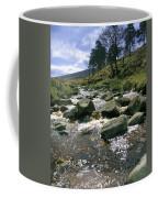 Sally Gap, River Liffey, Co Wicklow Coffee Mug