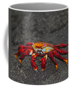Sally Lightfoot Crab Coffee Mug by Tony Beck