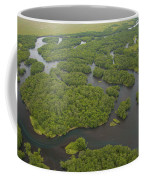 Salmon Spawn In Kronotsky Nature Coffee Mug by Michael Melford