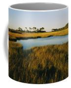 Salt Marsh, Assateague Island, Virginia Coffee Mug
