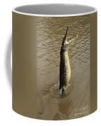 Salt Water Crocodile Coffee Mug
