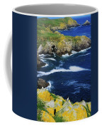 Saltee Islands, Co Wexford, Ireland Coffee Mug