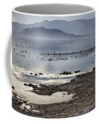 Salton Sea Birds Coffee Mug