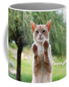 Salute Cat Coffee Mug
