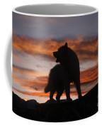 Samoyed At Sunset Coffee Mug